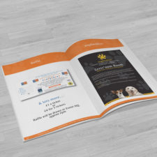 Leaflets & Posters